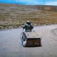 rearcarman_catch