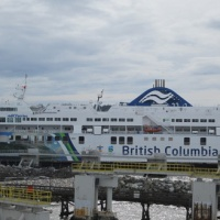 ferryboat_catch